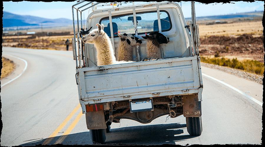 peru-Truck